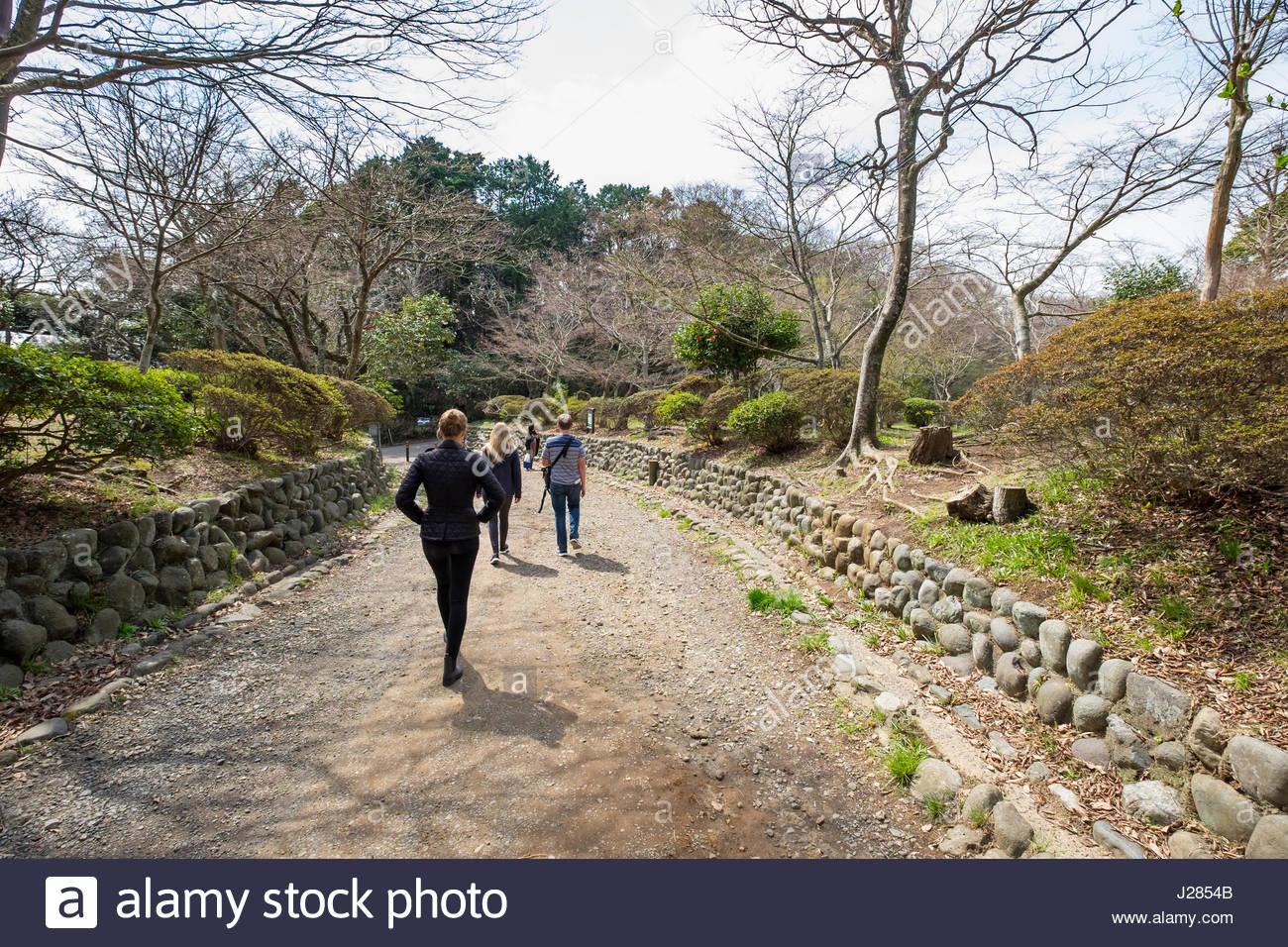 People walking through Genjiyama Park on the Kuzuharaoka-Daibutsu Hiking Course, Kamakura, Kanagawa Prefecture, - Stock Image