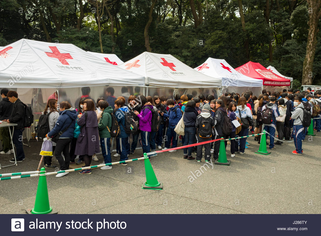 Young people standing in line to donate blood, Meiji Jingu, Shibuya, Tokyo, Honshu, Japan - Stock Image