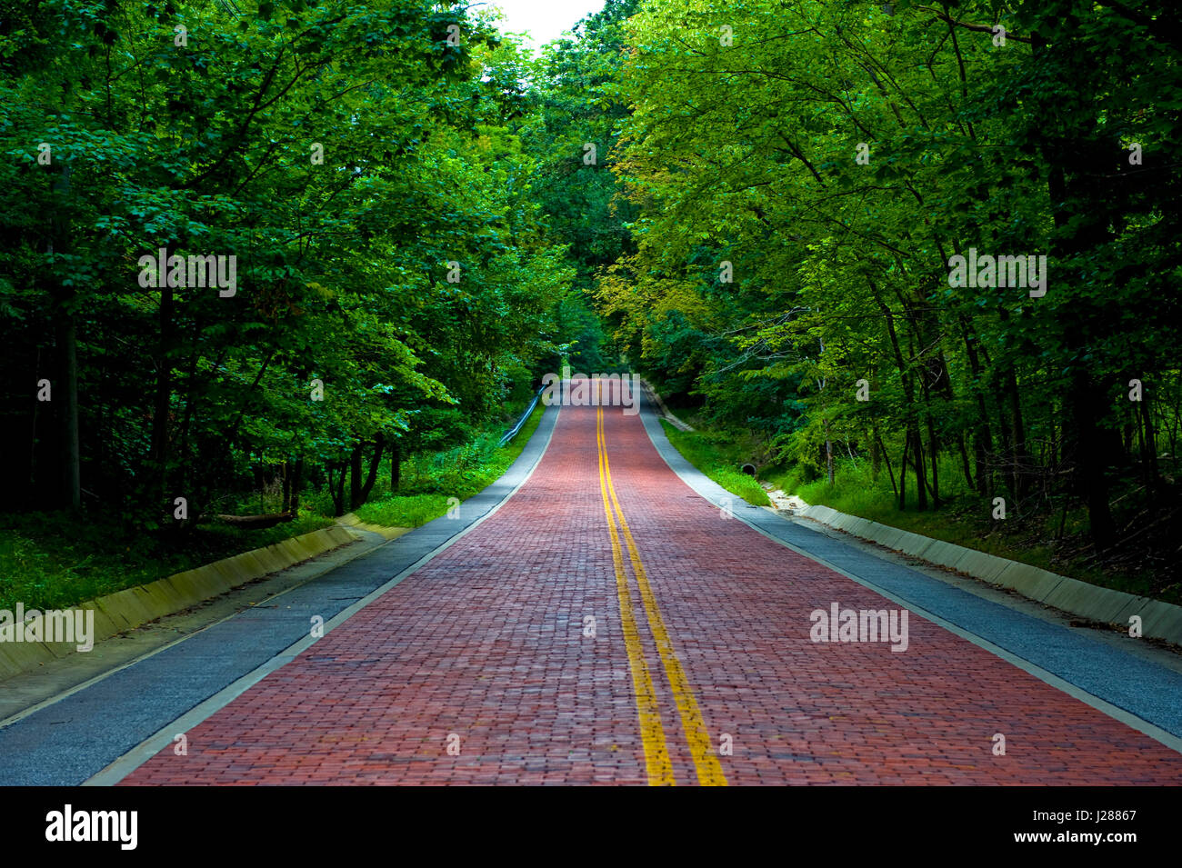 Image of a red brick road leading off into the distance thru a wooded area Stock Photo
