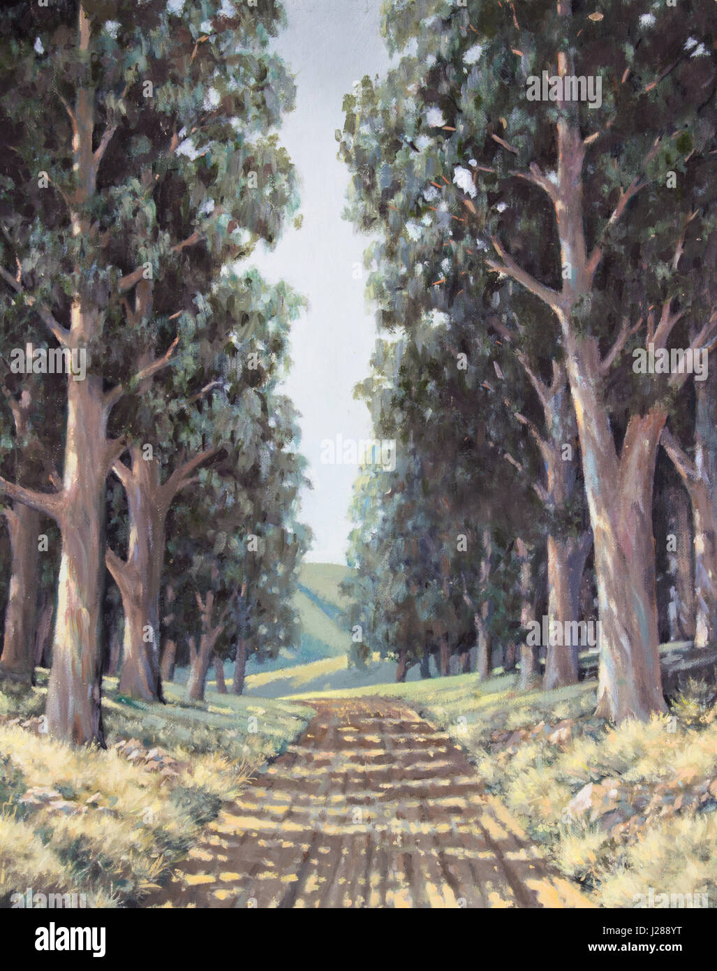 Original oil painting on canvas - Lane of sun-dappled tall eucalyptus trees next to country road in South Africa - Stock Image