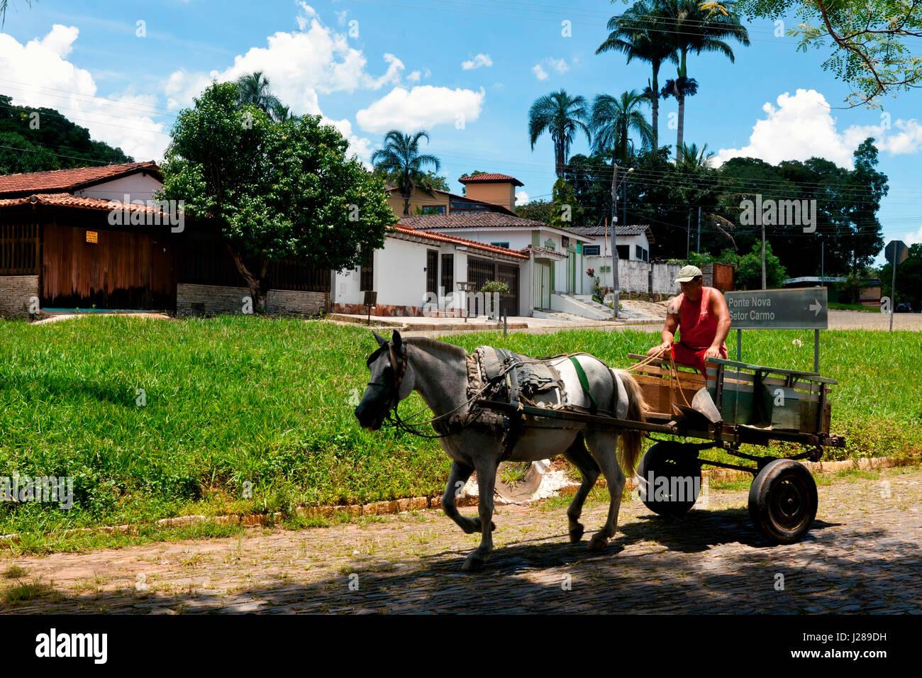 Brazil, state of Goias, Pirenopolis, horse-driven cart - Stock Image