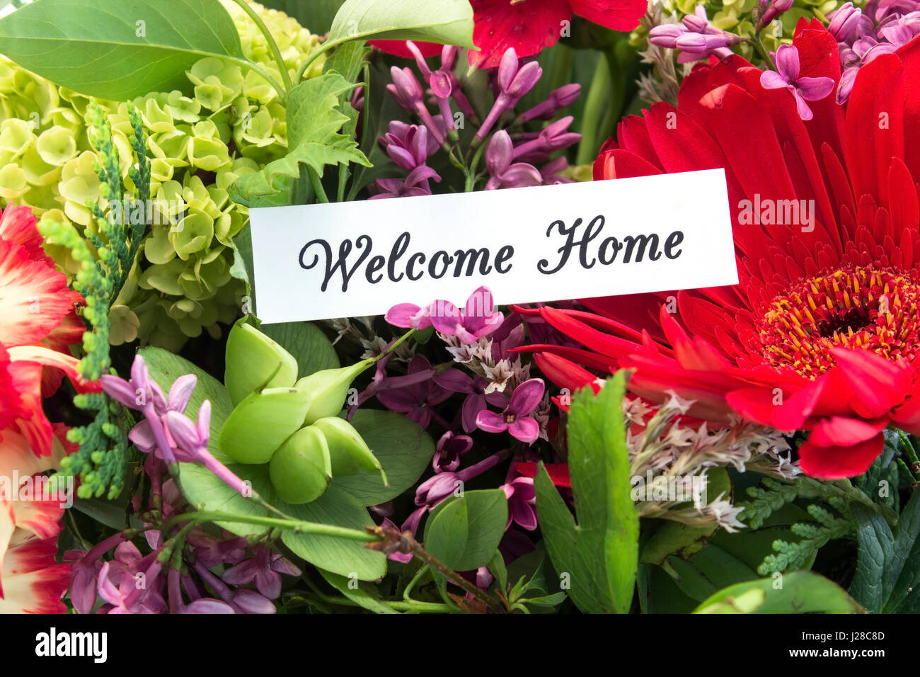 Welcome Home Card with Bouquet of Spring Flowers Stock Photo ...