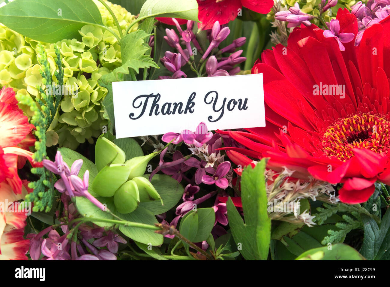 Thank you with flowers stock photos thank you with flowers stock thank you card with bouquet of spring flowers stock image izmirmasajfo