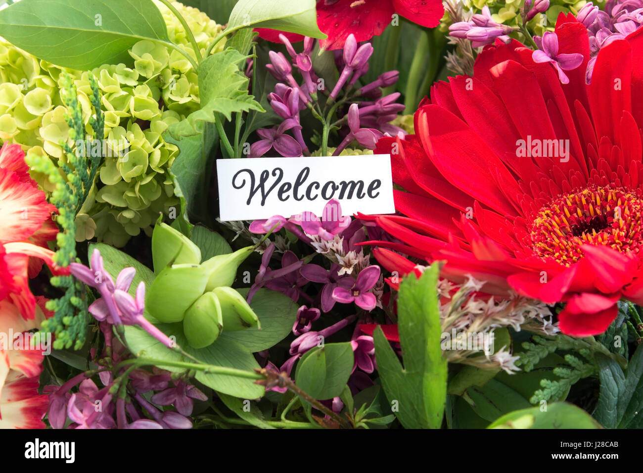 Welcome Flowers Bouquet Stock Photos Welcome Flowers Bouquet Stock