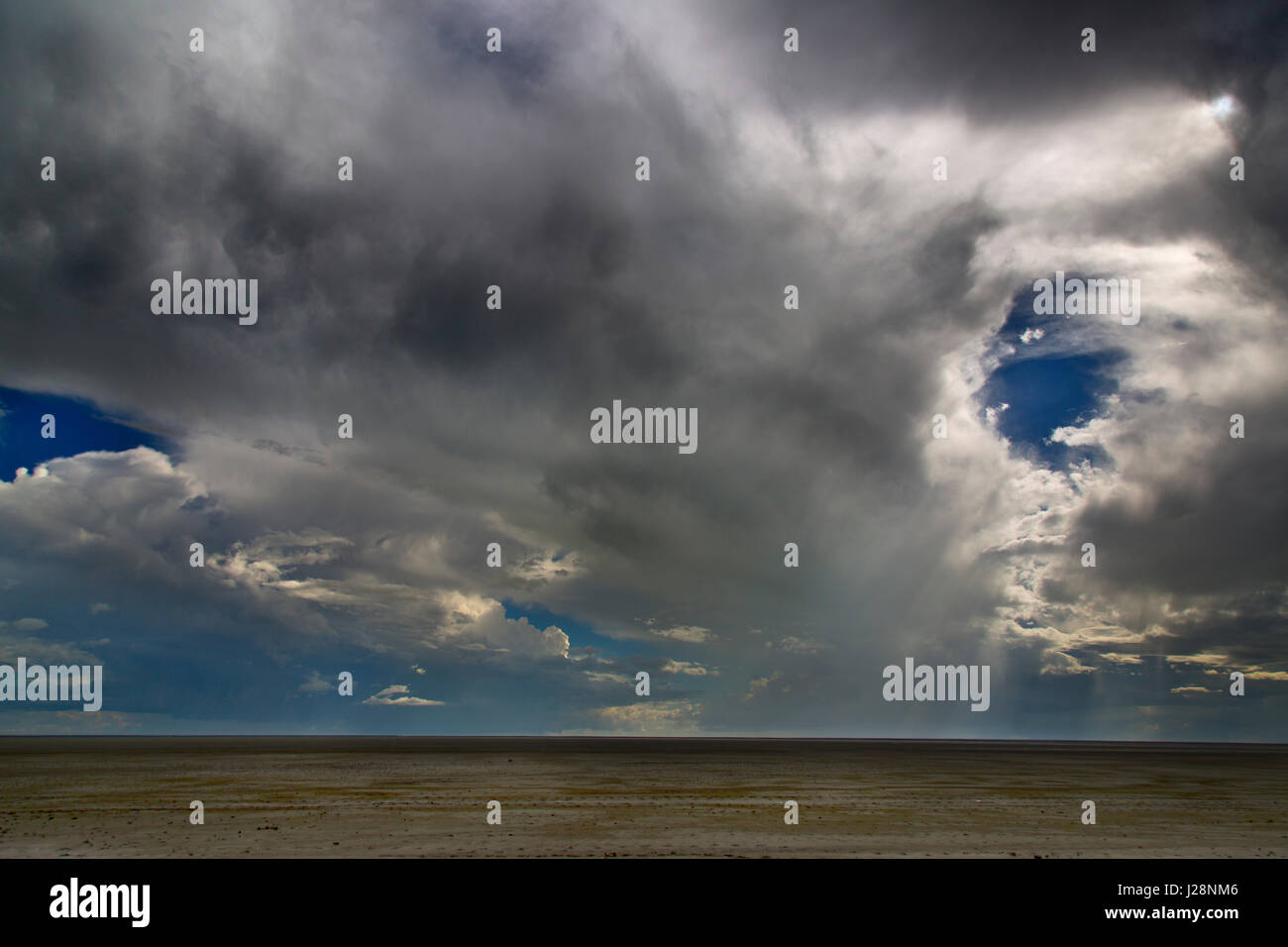 Saltpans at Etosha national park and brfooding sky Namibia - Stock Image