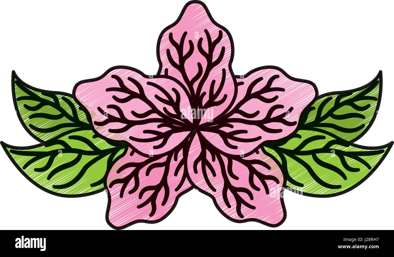 Lotus Symbol Stock Photos Lotus Symbol Stock Images Alamy