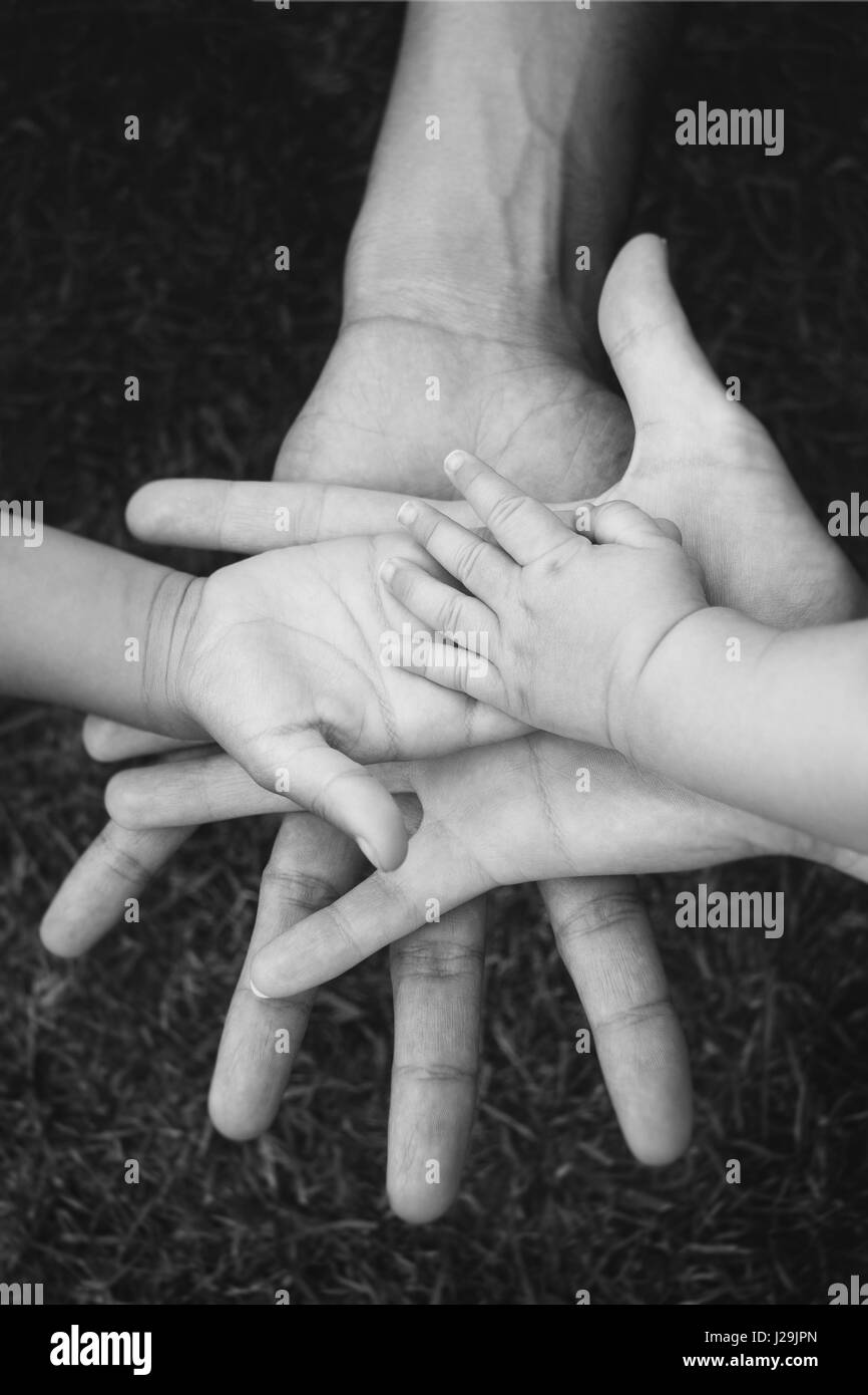 Four hands of the family, a baby, a daughter, a mother and a father. Concept of unity, support, protection and happiness. - Stock Image