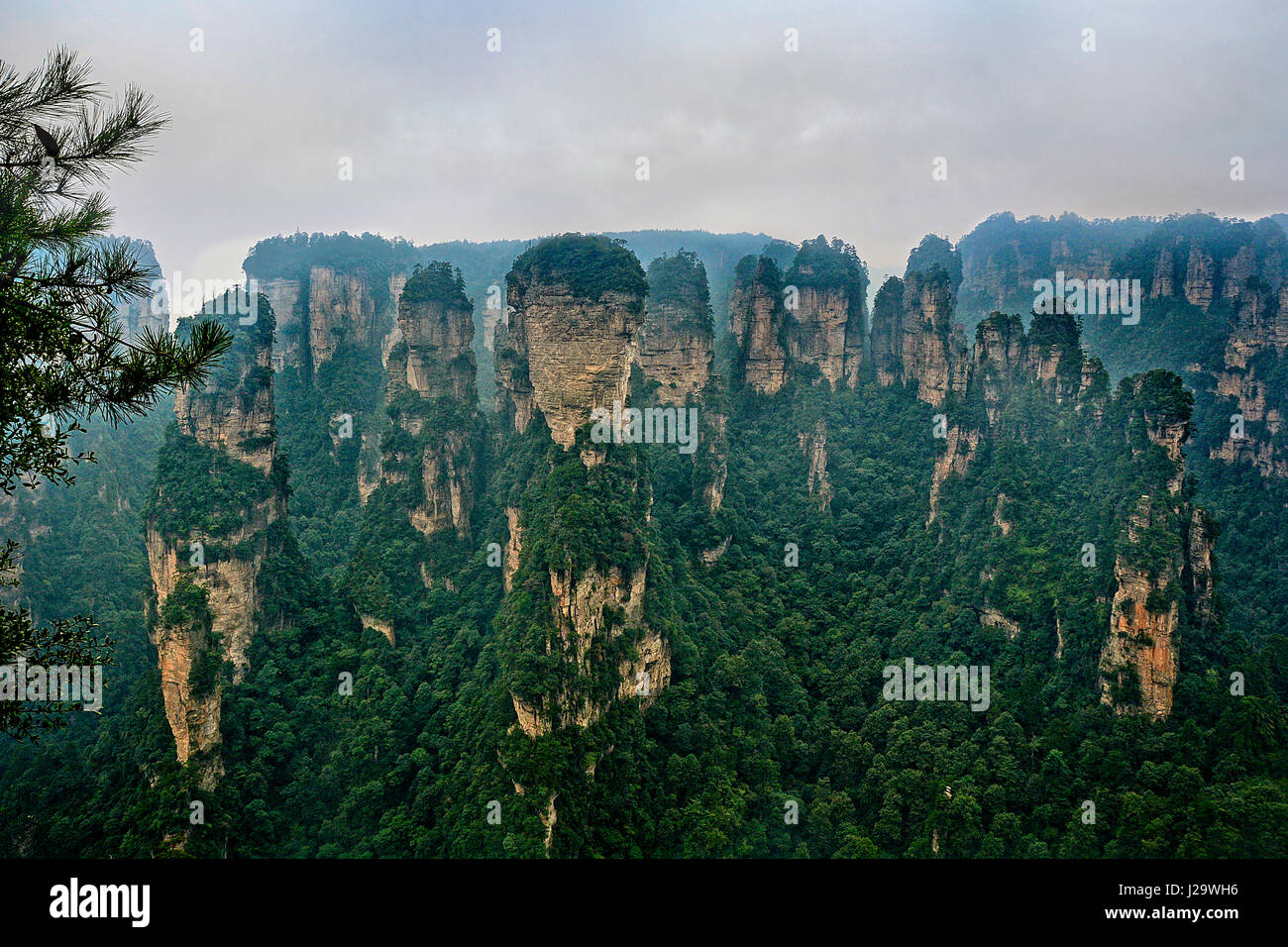 The nature of China and its features