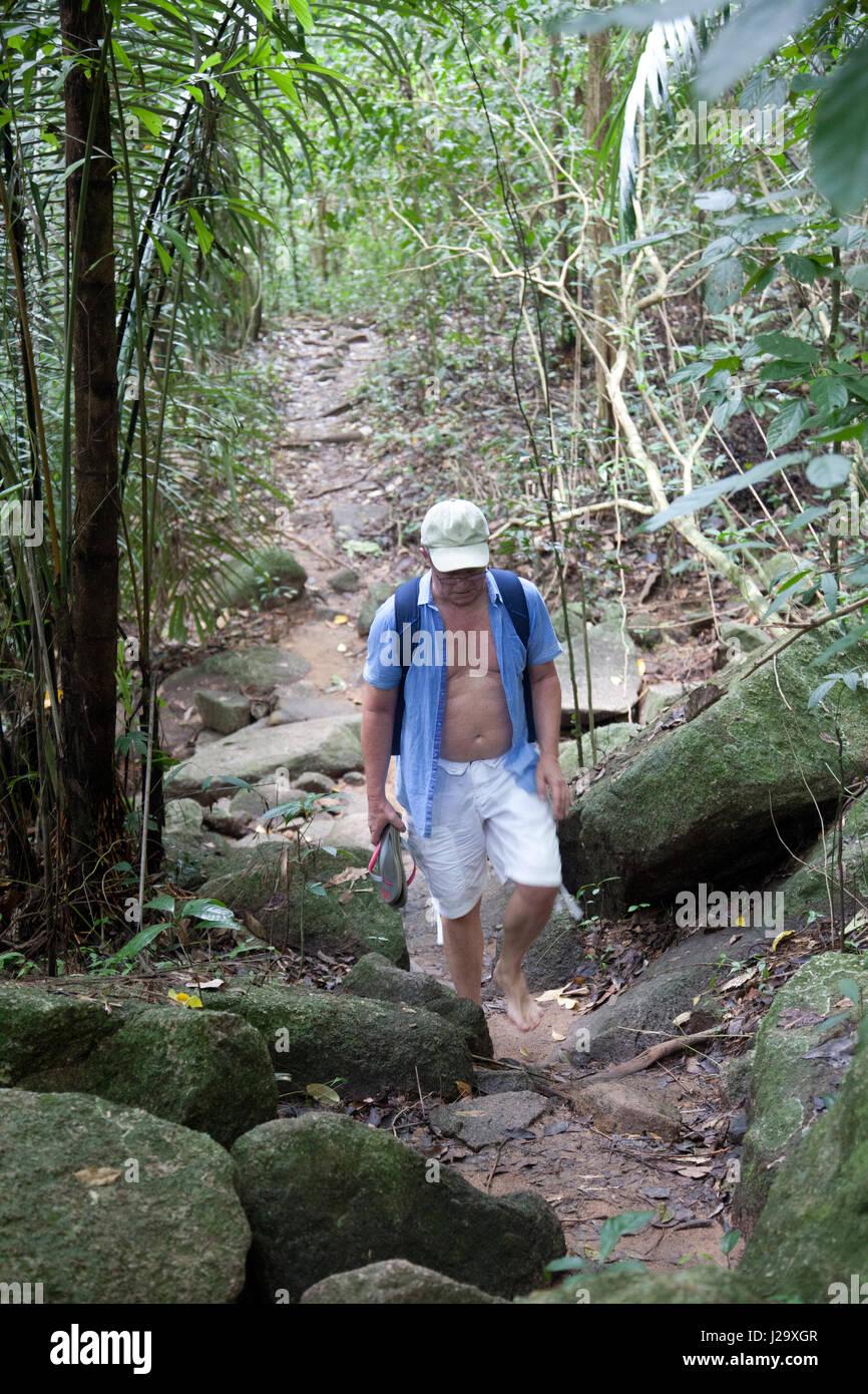 Hin Lad waterfalls Vegetation Path in Ko Samui, Thailand - Stock Image
