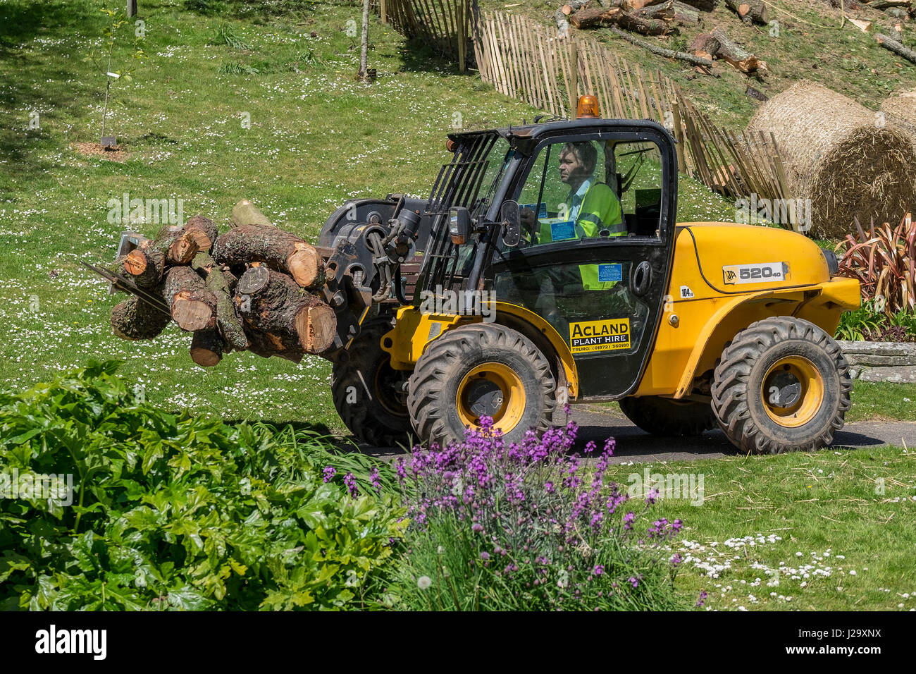 JCB 520 40 Agri Loadall Telescopic Handler Vehicle Carrying cut logs Driver Working vehicle Outside - Stock Image