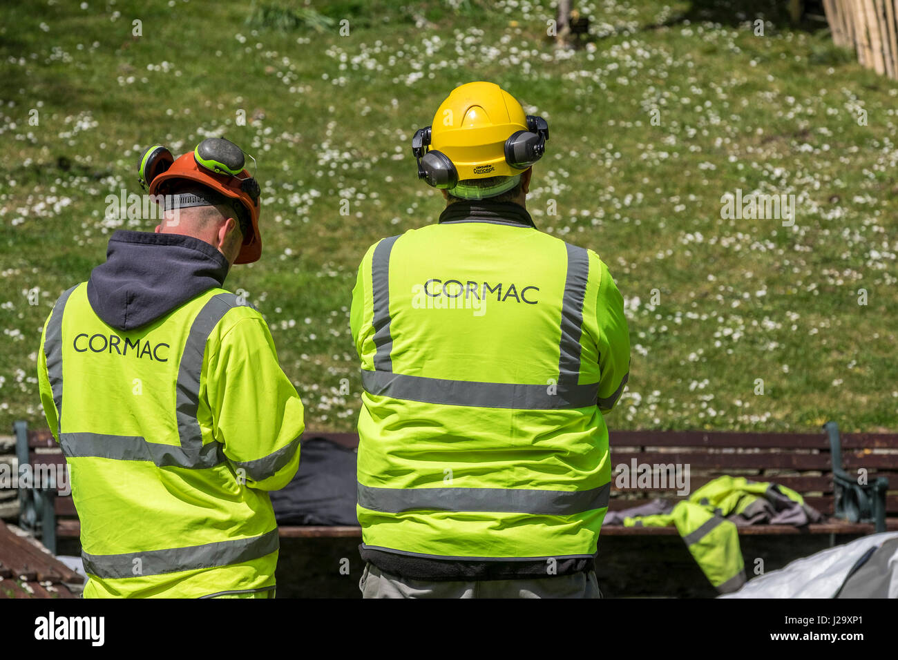 Cormac Workers Safety workwear Protective workwear Arboriculture Team Supervising Outside Hi-viz workwear - Stock Image