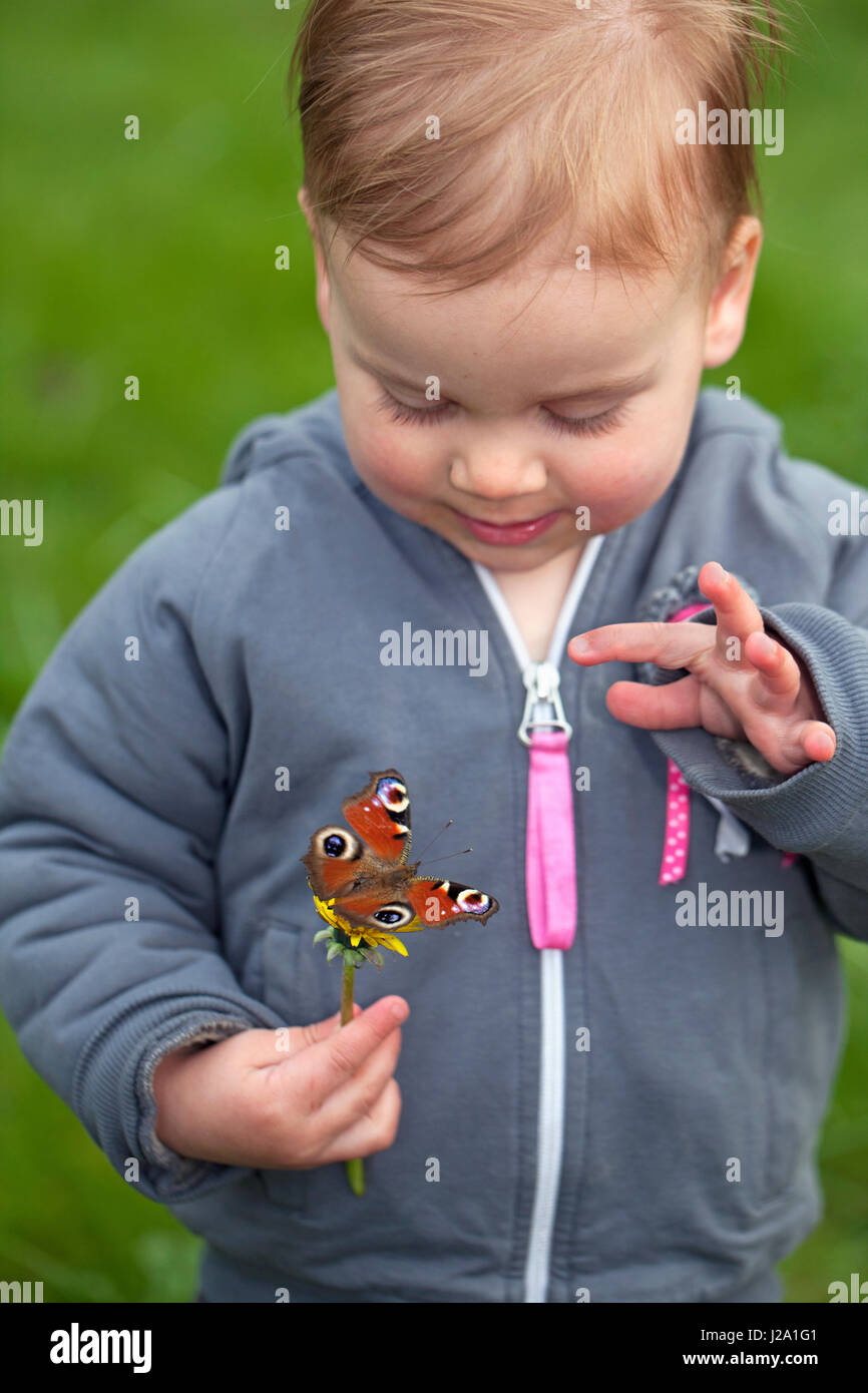 girl with european peacock butterfly - Stock Image