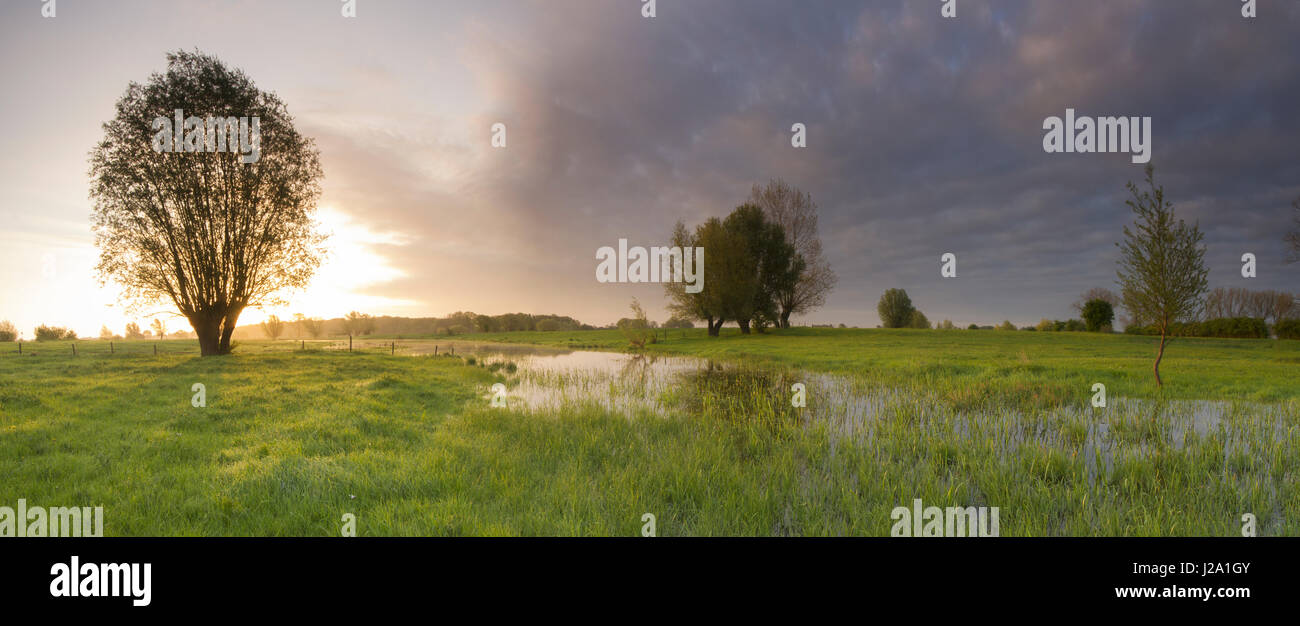 Dark skies in springtime over the forelands of the river IJssel - Stock Image