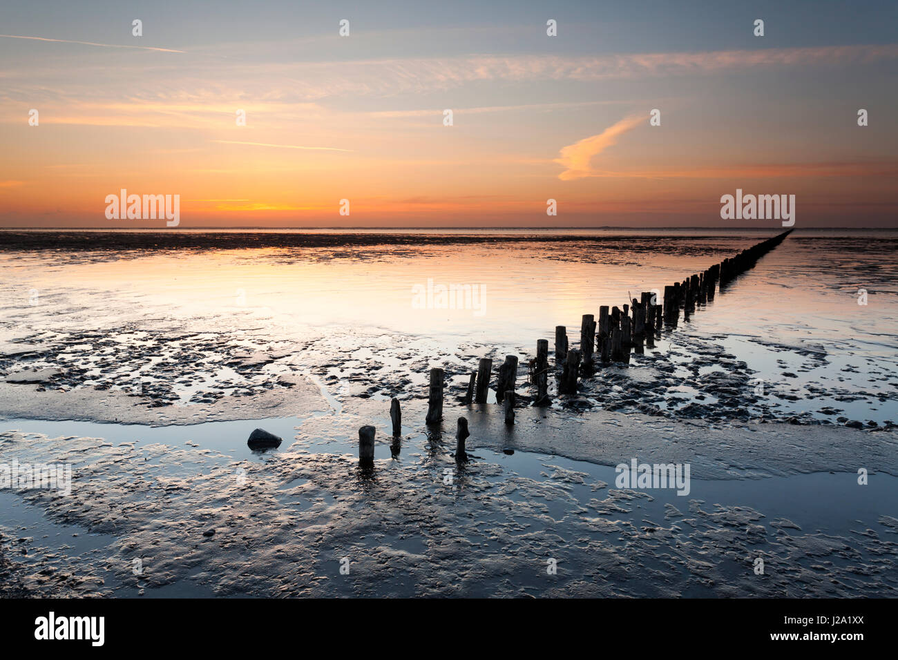 The breakwaters who were used in the early days to break the tide are standing in the mud-flats in de Waddensea - Stock Image