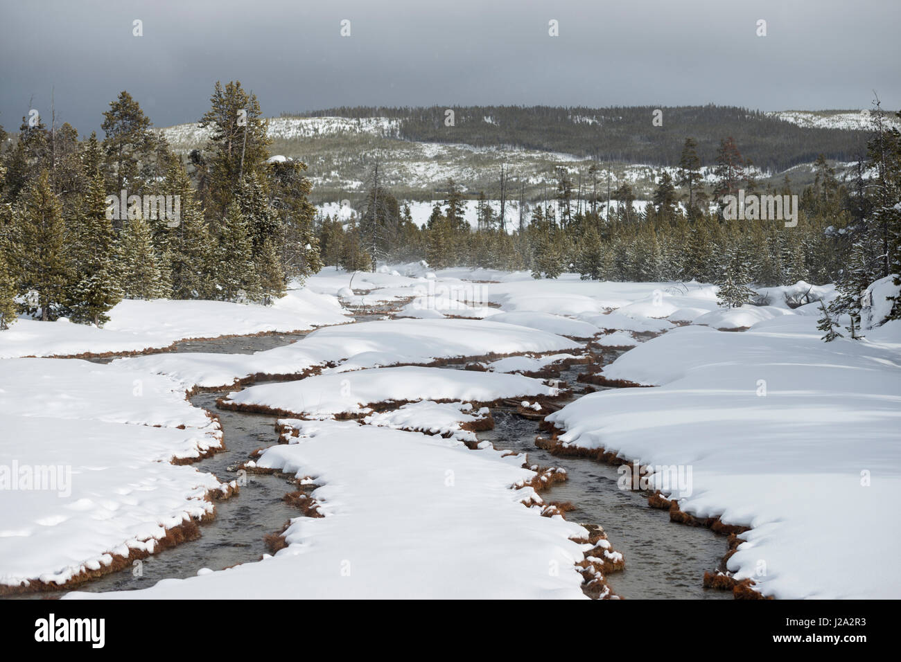 Yellowstone National Park, Continental Divide, open waters, small creeks running down through snow covered woods, - Stock Image