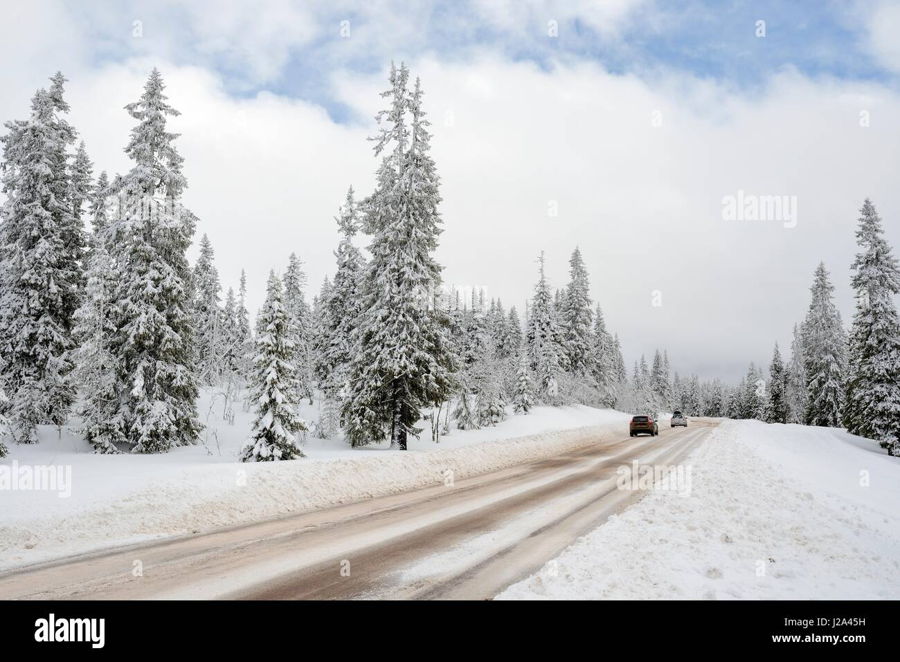 Road through a Winter Wonderland - Salen in Sweden. - Stock Image