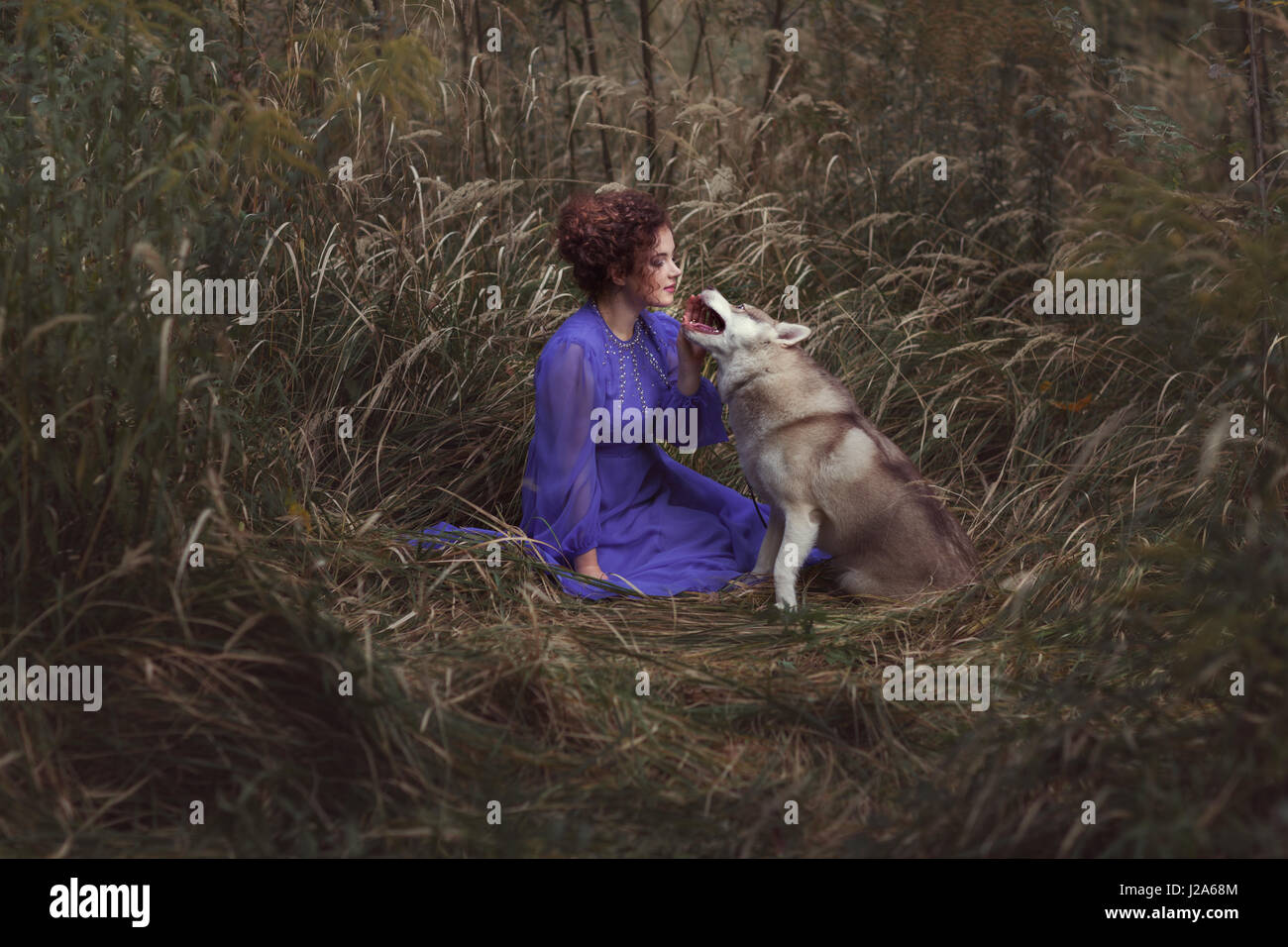 Husky dog talking to a woman, they are in a fairy tale. - Stock Image