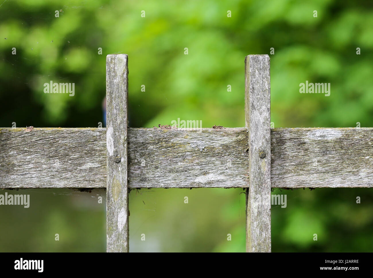 Old wooden bridge fence plank covered in lichen and moss and green woodland background Stock Photo