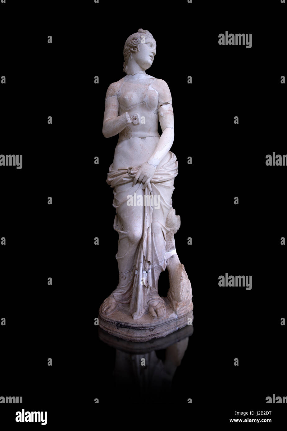 The Roman Venus Statue, the Goddess of Love, follows the style of a modest Aphrodite, The National Bardo Museum, Stock Photo