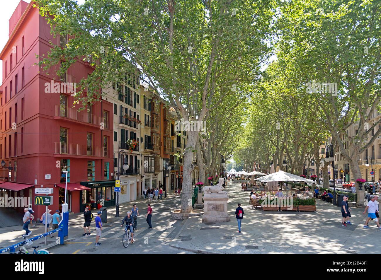 Passeig des Born in Palma de Mallorca, Spain - Stock Image