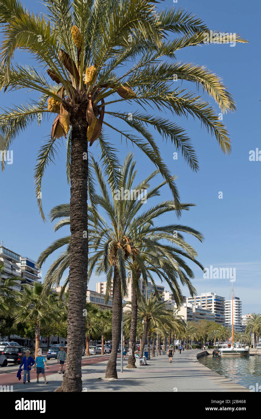 seafront in Palma de Mallorca, Spain - Stock Image