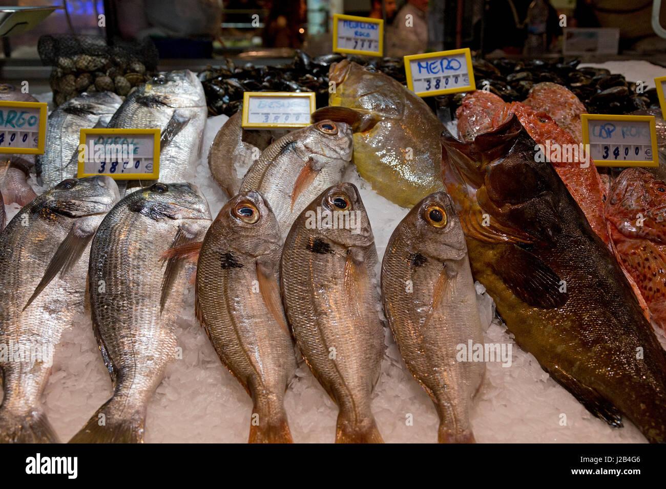 fish stall at Mercat de l´Olivar in Palma de Mallorca, Spain - Stock Image