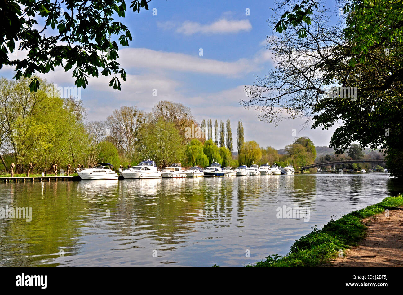 Rver cruisers - reflections - framed by trees - sunlight - blue sky - scenic view - river Thames - Hurley - Stock Image