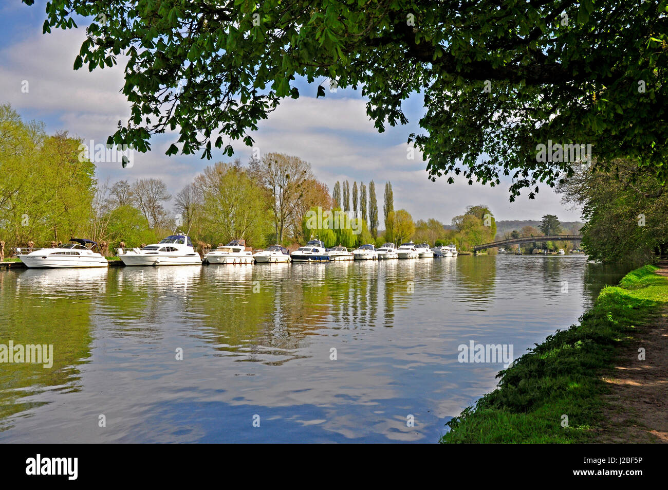 View to moored river cruisers -reflections in the river- framed by trees - sunlight - blue sky - Thames path - Hurley - Stock Image