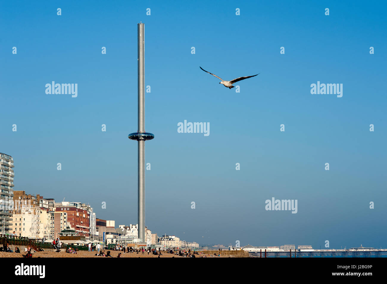 i360, Brighton, U.K, 2016. The British Airways i360 is the world's tallest moving observation tower and opened - Stock Image