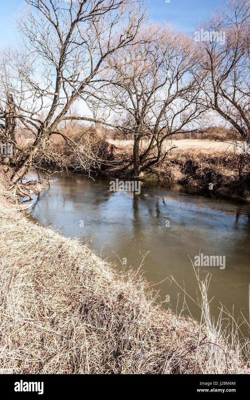 Odra river with trees and clear sky in CHKO Poodri protected area near Studenka city in Czech republic during springtime Stock Photo