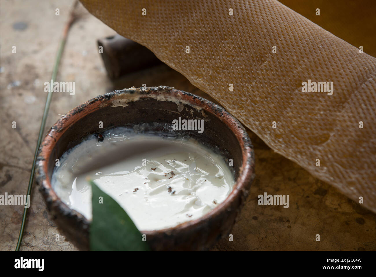 Thailand, Samui Island, Ko Samui. Rubber tree plantation. Dish of raw white latex sap with rubber mat ready for Stock Photo