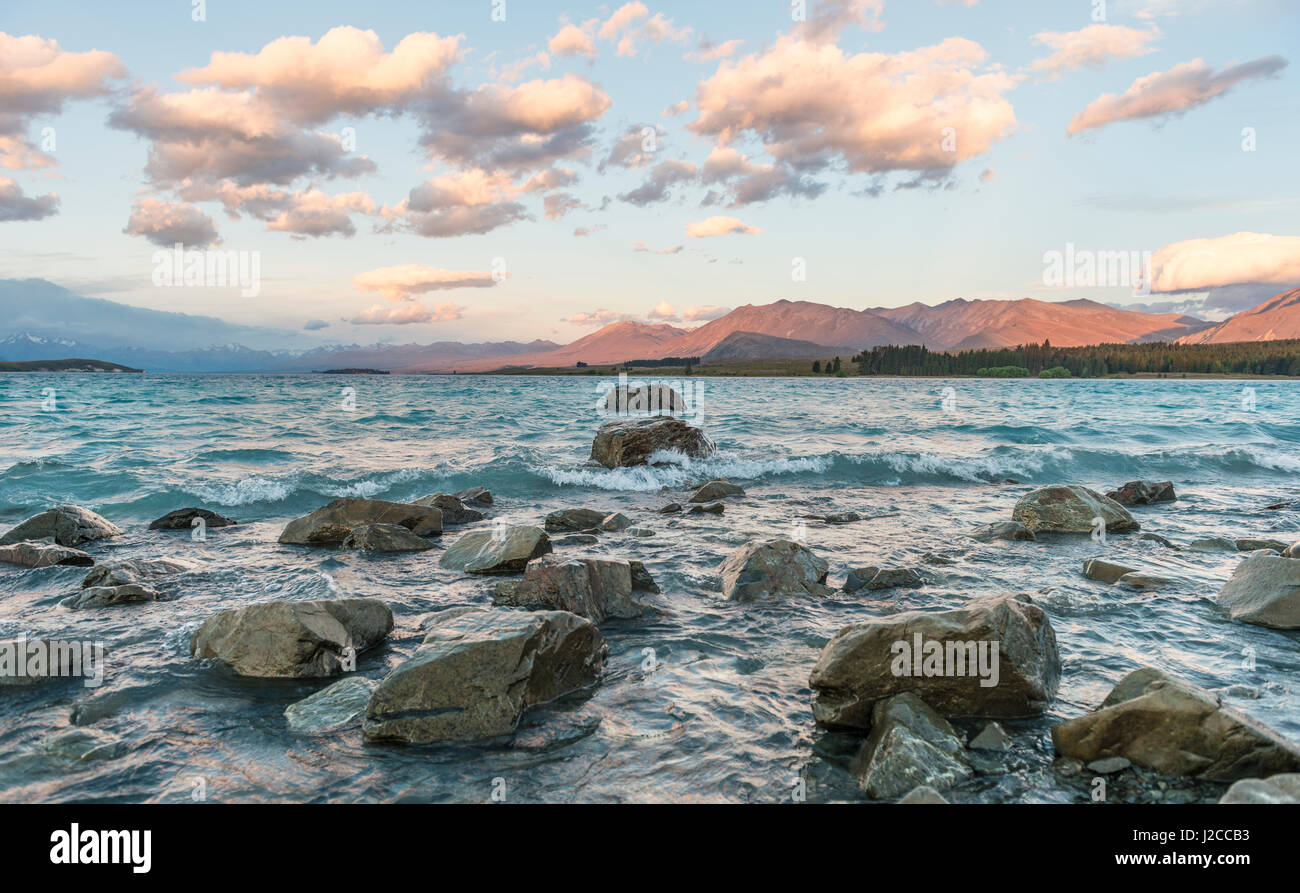 Sunset, shores of Lake Tekapo, Canterbury Region, Southland, New Zealand - Stock Image