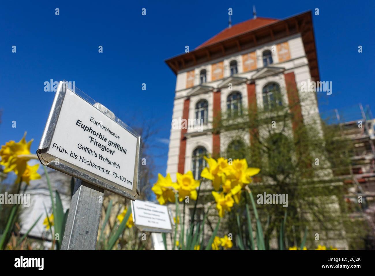 Wien, Universität für Bodenkultur (Boku), Gregor-Mendel-Haus - Stock Image