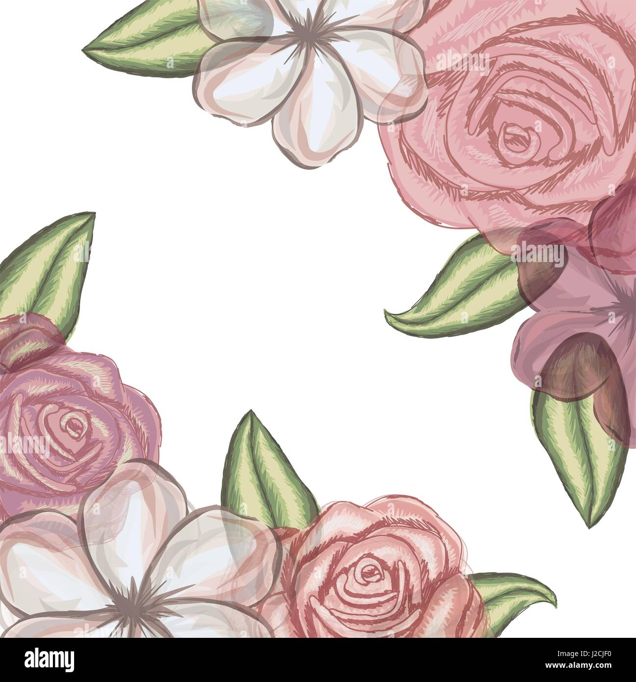 colorful floral background of flowers in transparency - Stock Image
