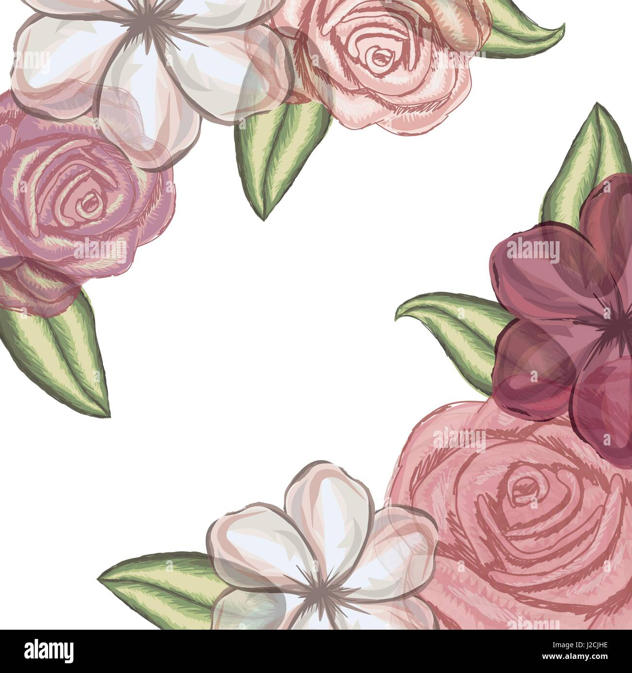 colorful floral background with flowers in transparency - Stock Image