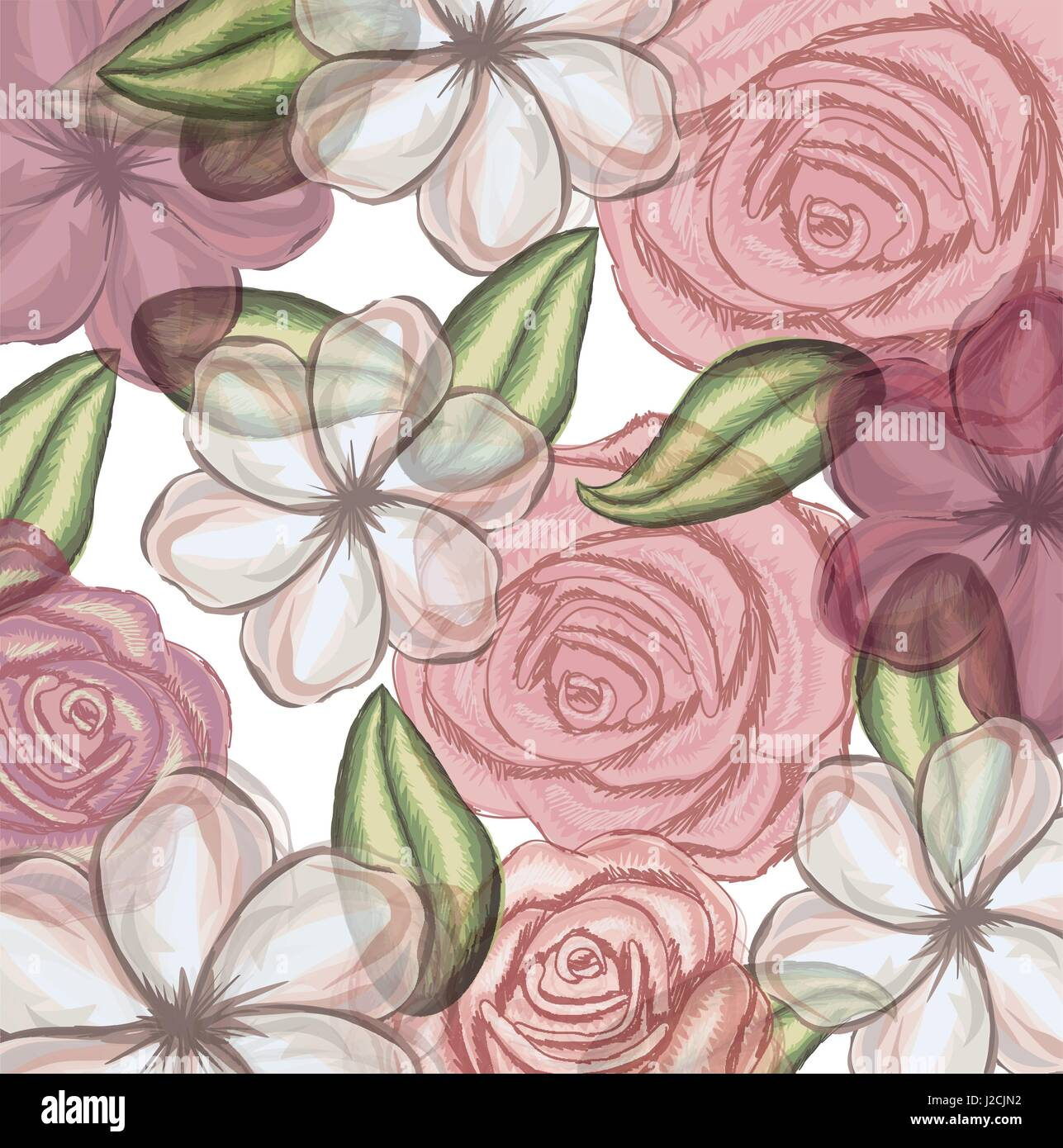 colorful floral pattern with flowers in transparency - Stock Image