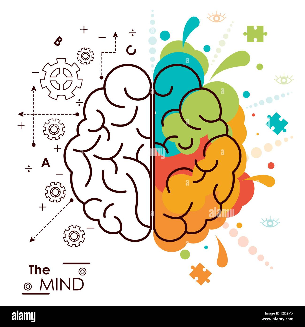 the mind brain human functions left right design - Stock Image