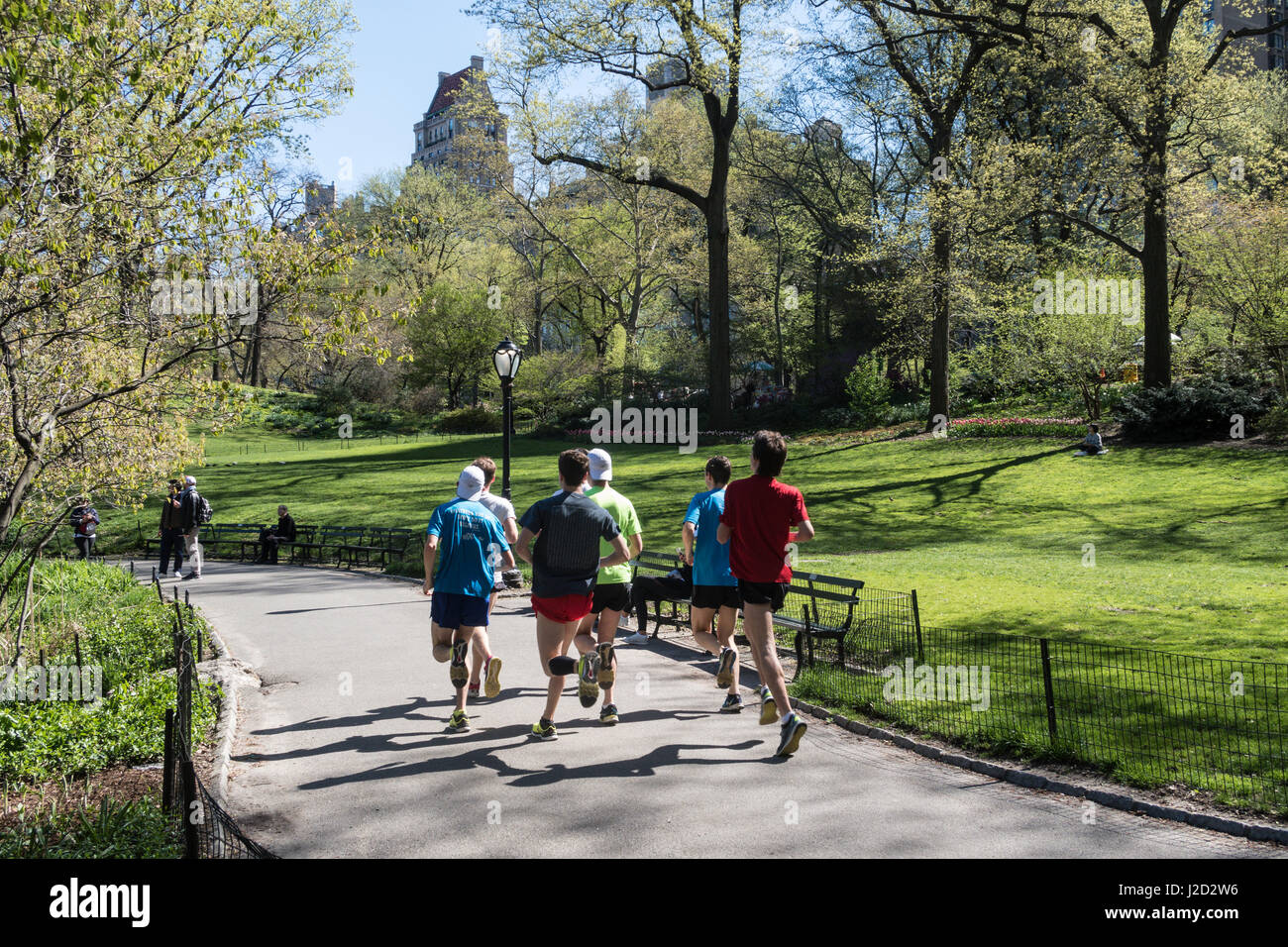 Group of Male Runners Training in Central Park in Springtime, New York City, USA - Stock Image