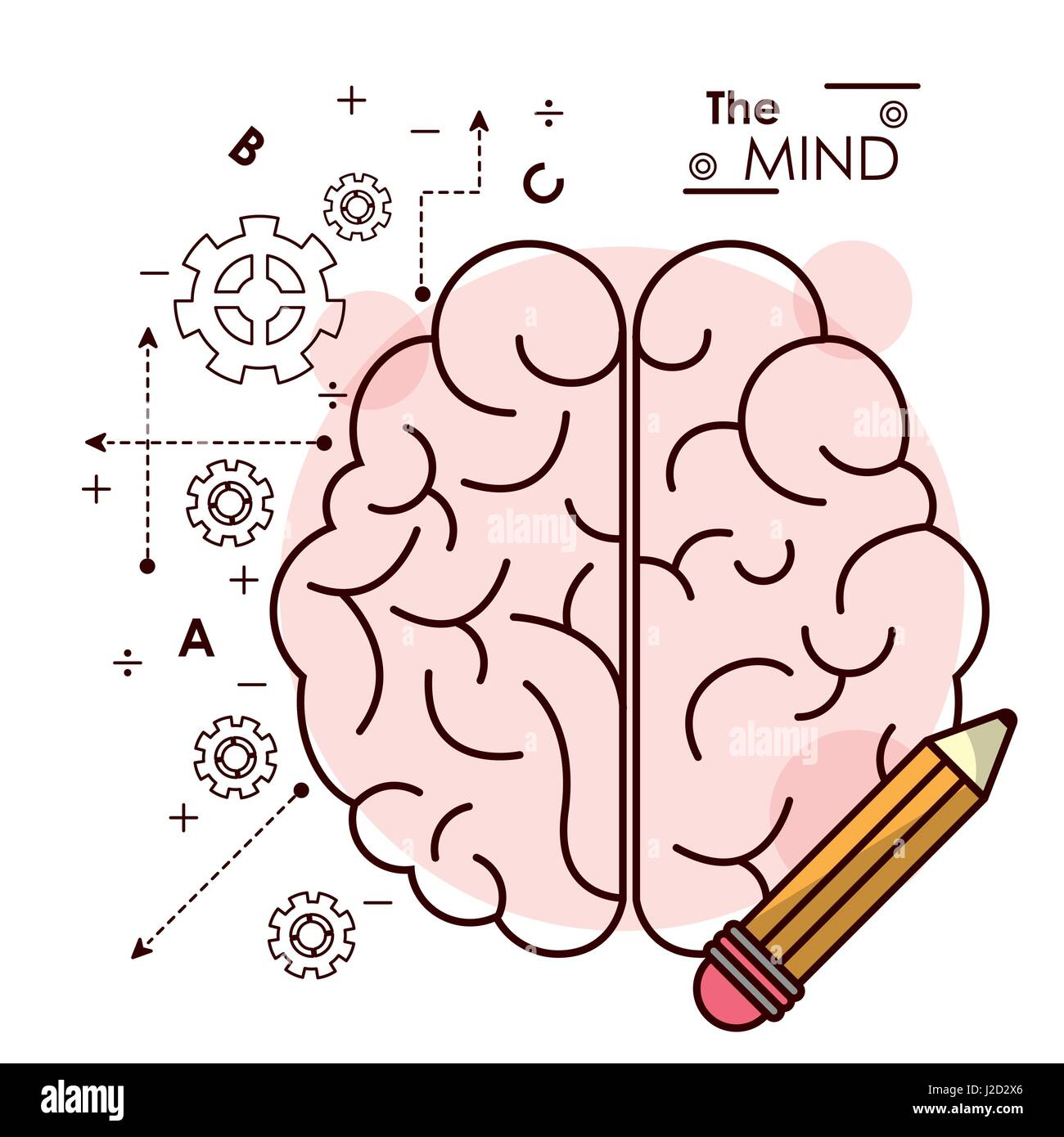 the mind brain pencil idea creativity intelligence collaboration outline - Stock Image