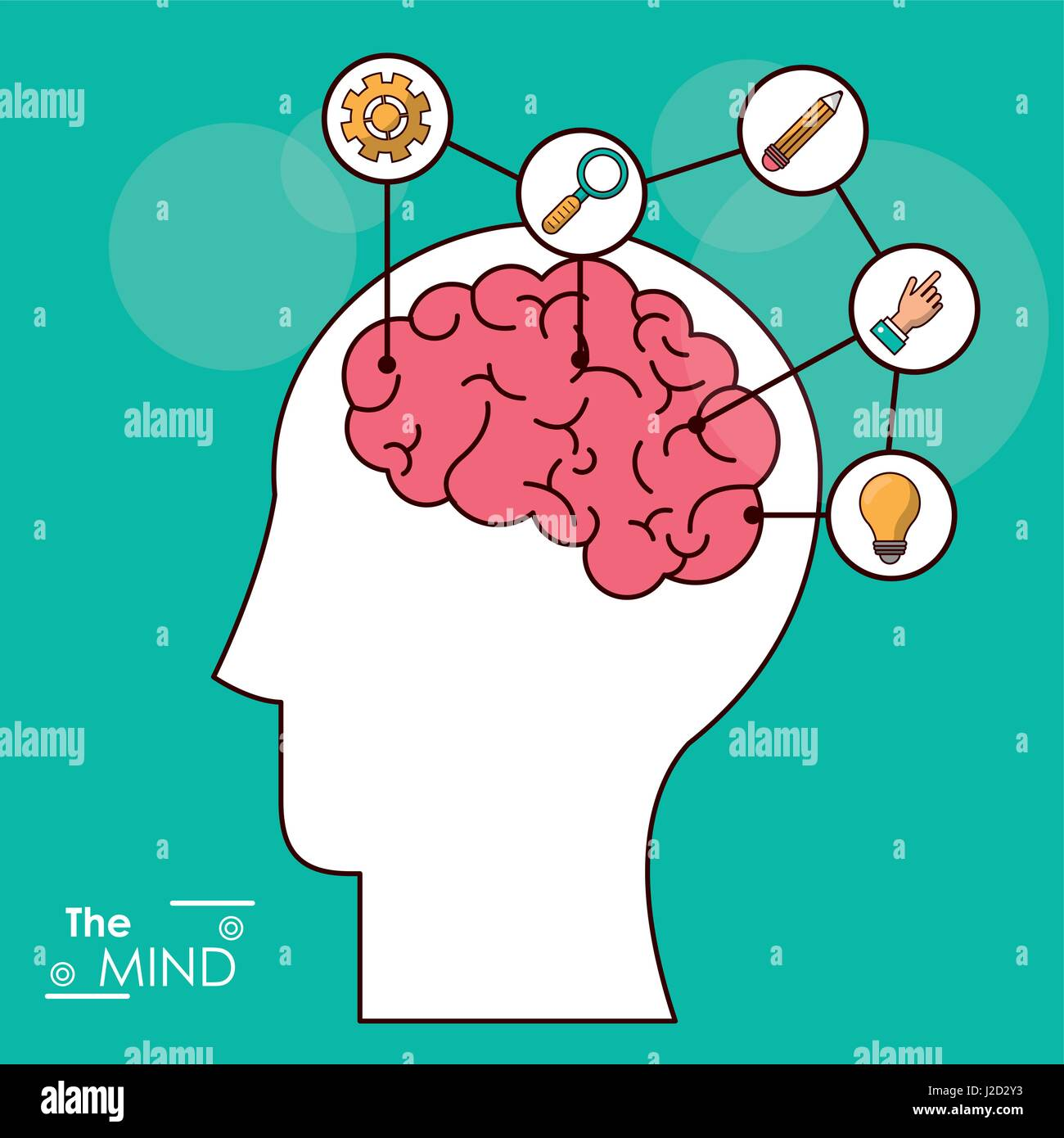 the mind head brain creativity solution knowledge think - Stock Image