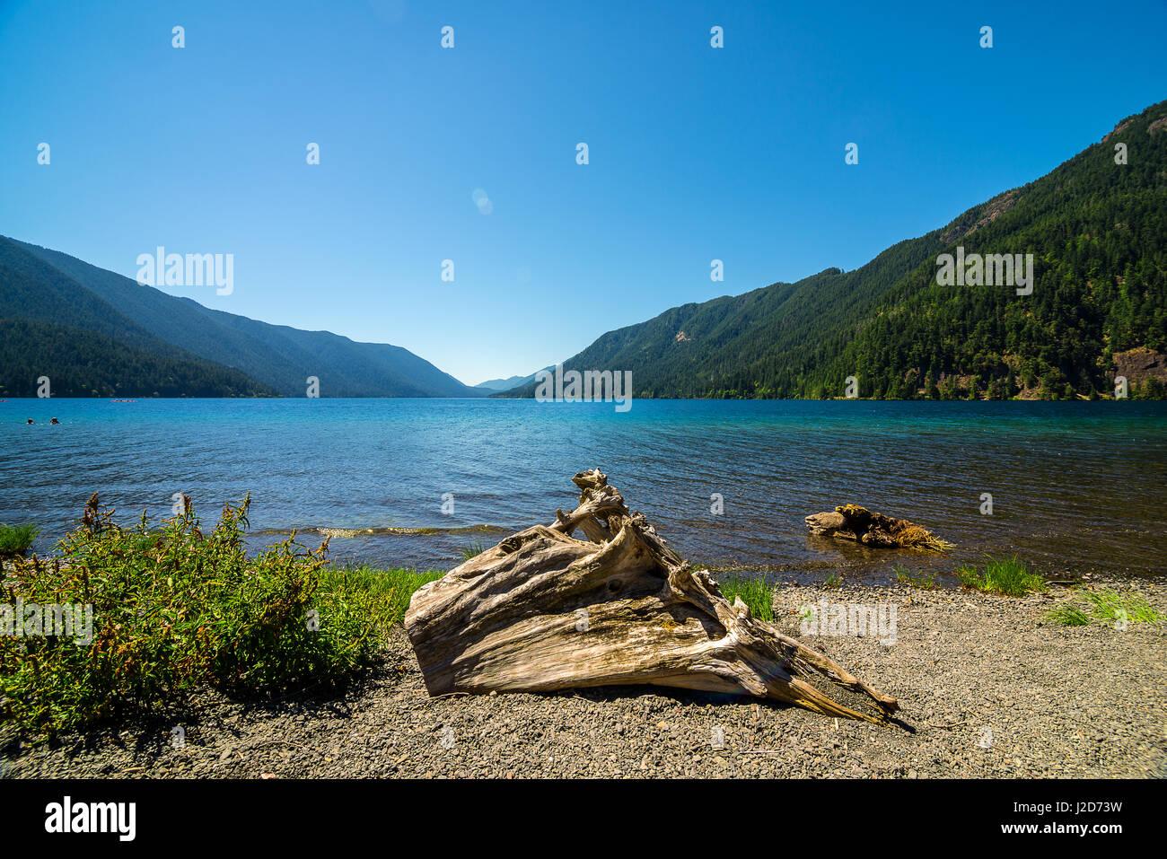 Washington State - Stock Image