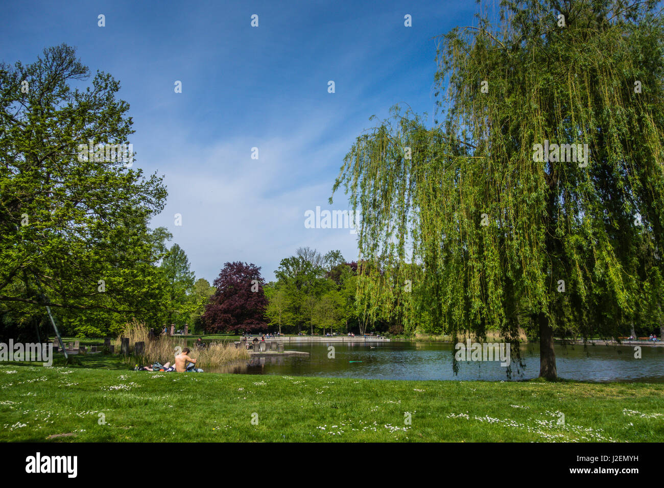 A restful day by a small lake at the Karlsruhe Botanical Gardens and Palace, Germany - Stock Image
