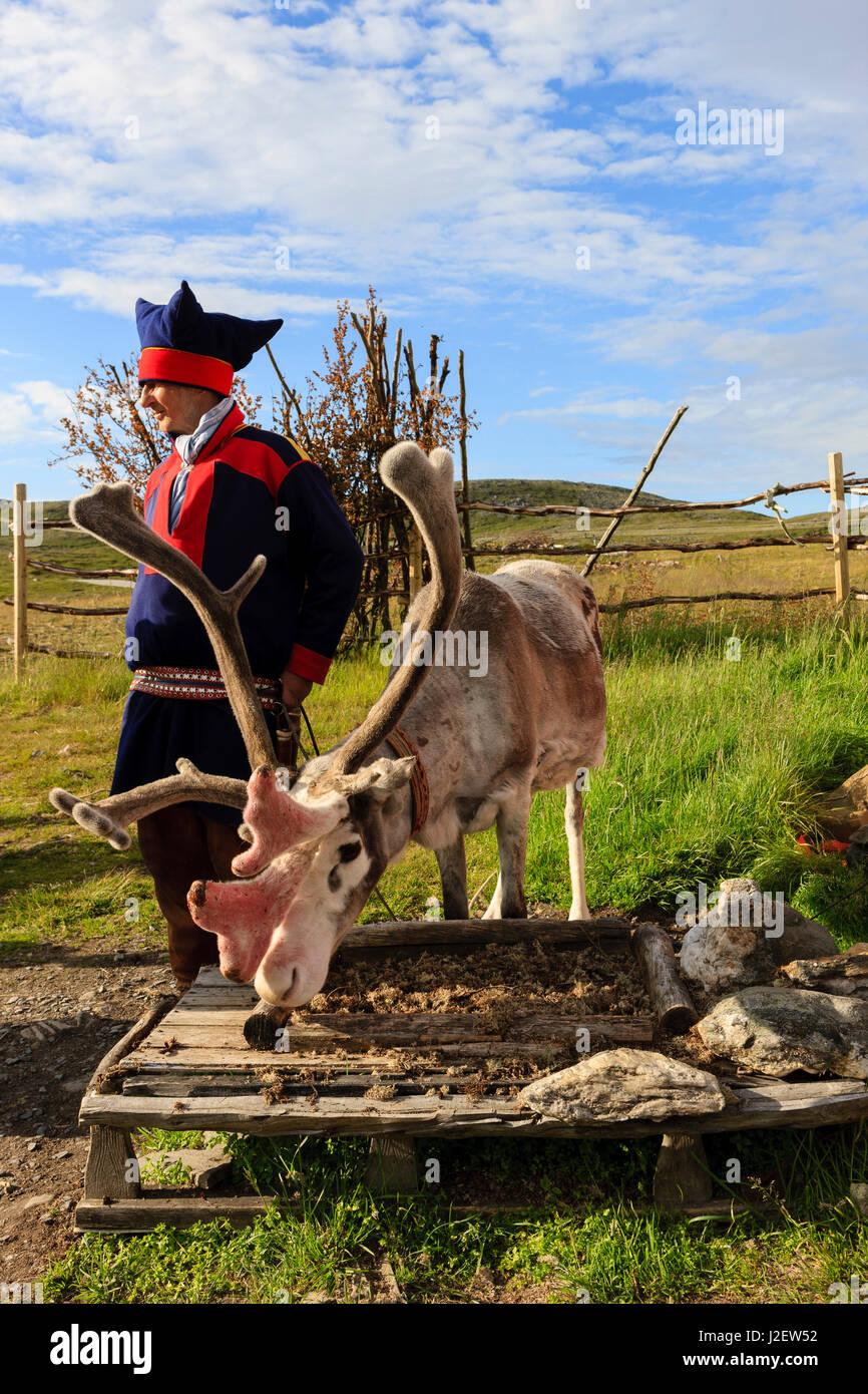 Sami man. Laplander with his Reindeer. North Cape. Honningsvag. - Stock Image