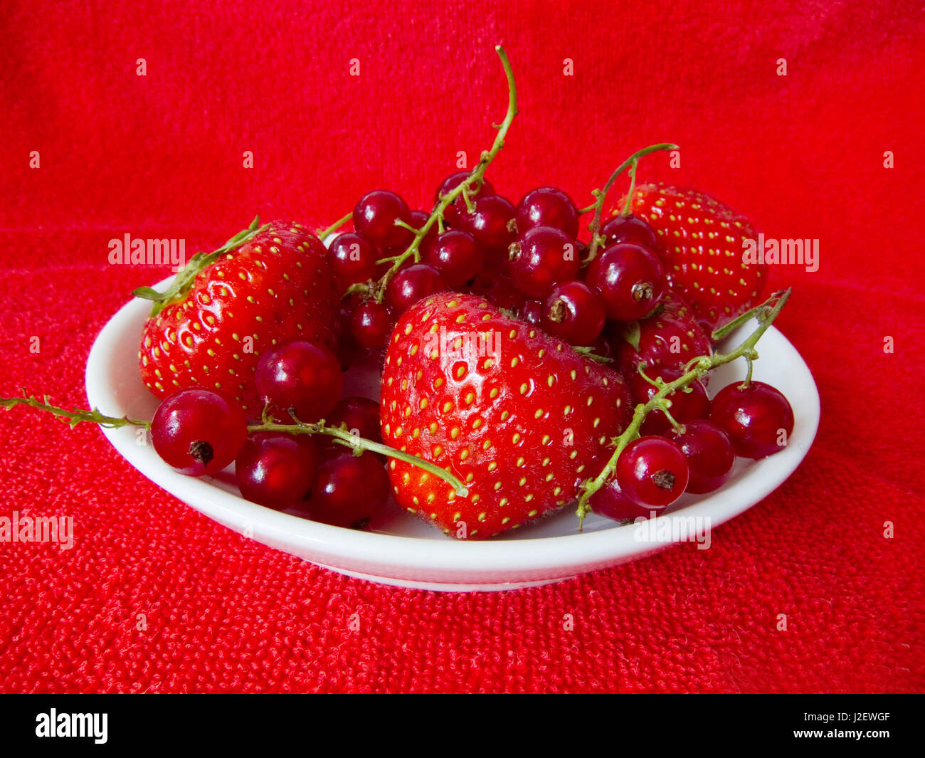 White dish of strawberry and rasberry on red background - Stock Image