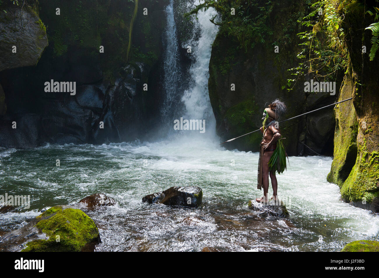 Colorfully dressed and painted local tribal chief stands before a waterfall in the Highlands of Papua New Guinea, - Stock Image