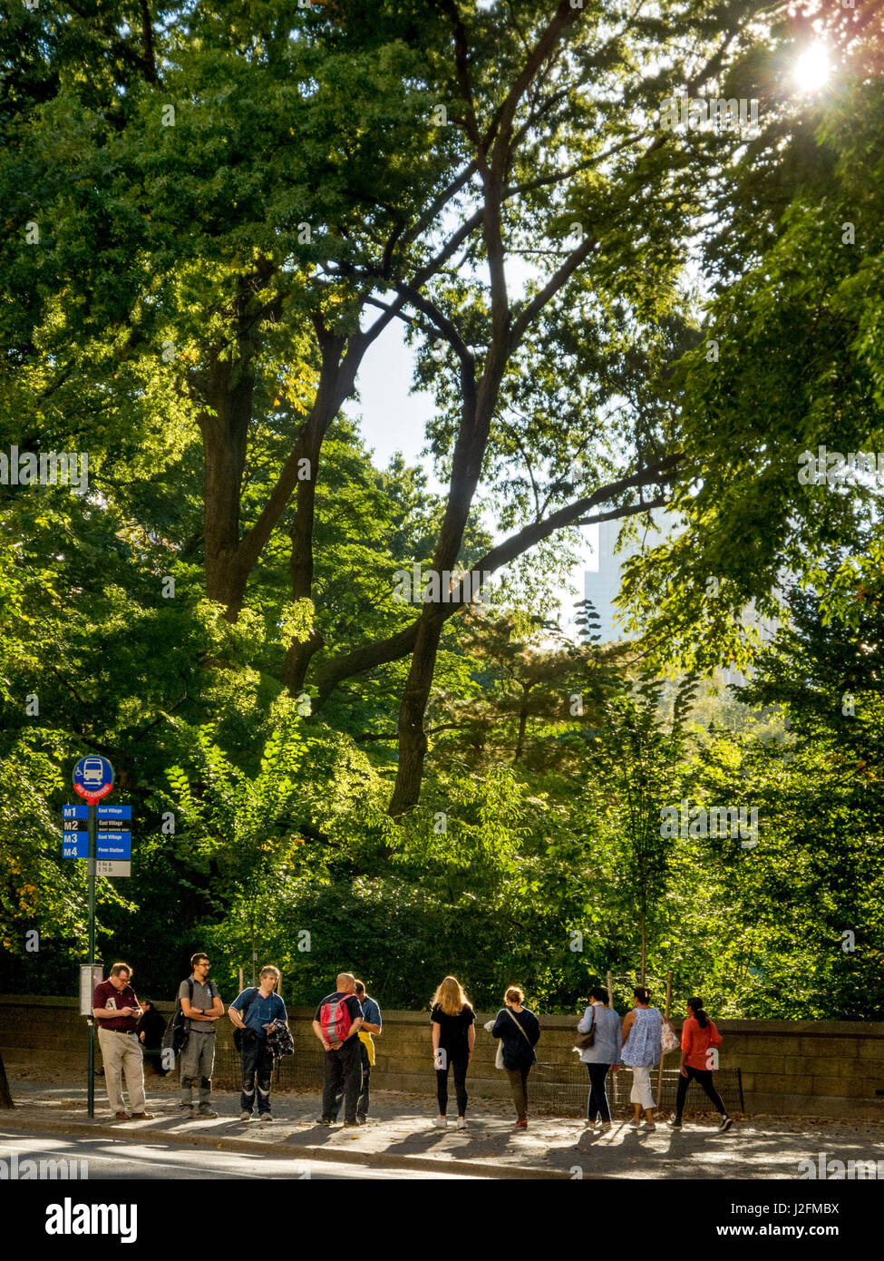 A diversified crowd of travelers waits at a southbound bus stop by Central Park on Fifth Avenue, NY City, on a sunny Stock Photo