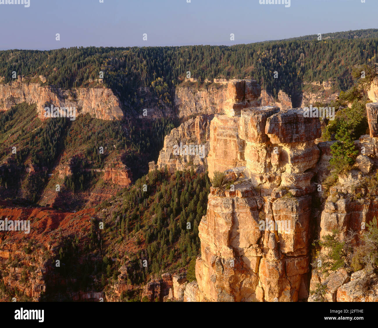 USA, Arizona, Grand Canyon National Park, Kaibab Limestone at Point Imperial with Walhalla Plateau in the distance. - Stock Image