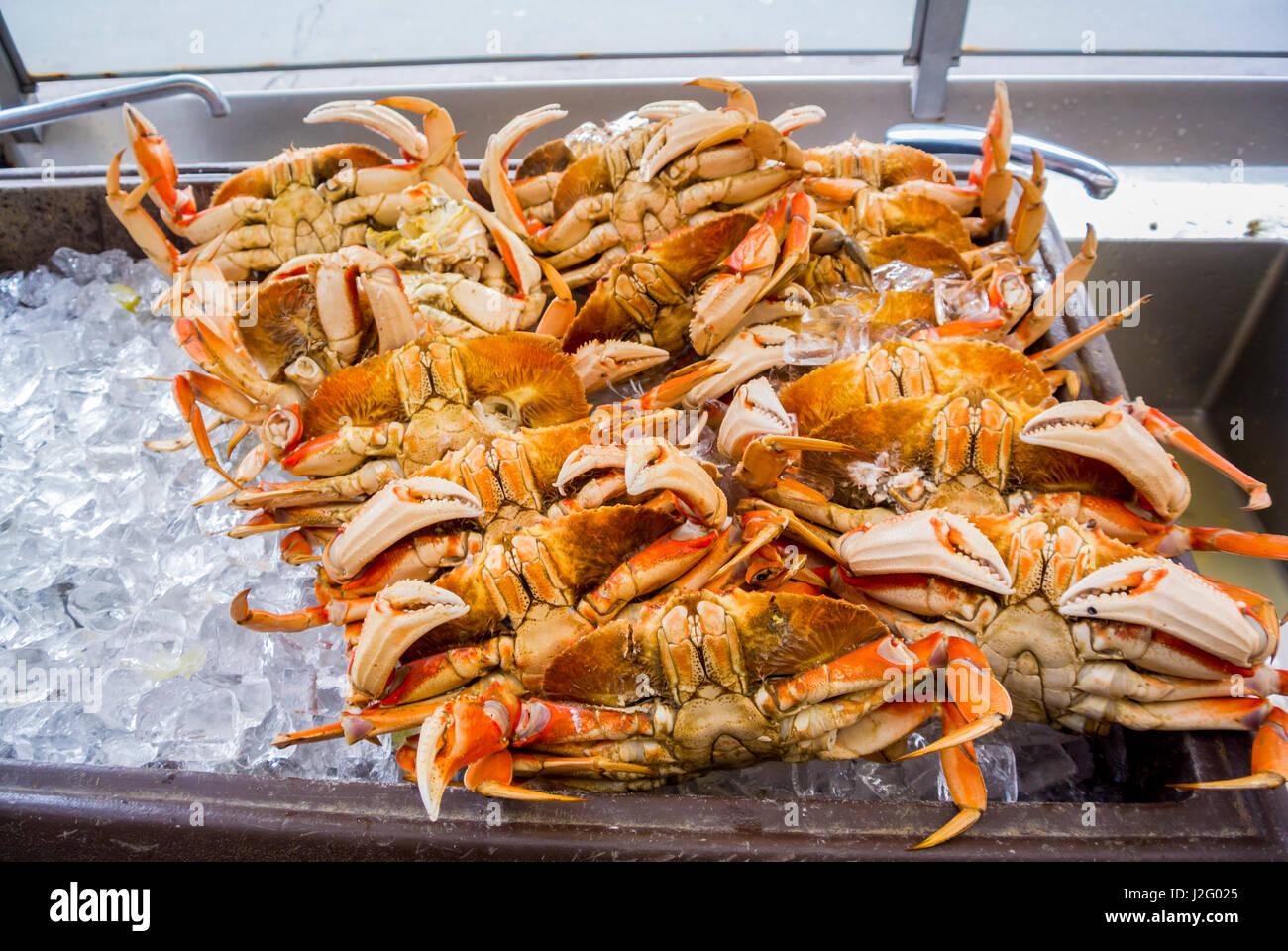 crabs at fisherman's wharf san francisco usa - Stock Image