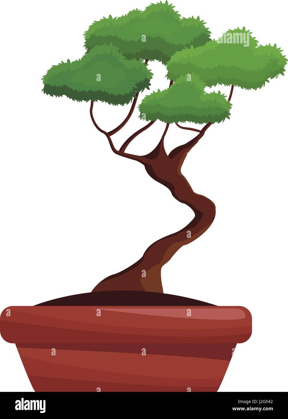 pot tree bonsay longevity botanical hobby - Stock Image