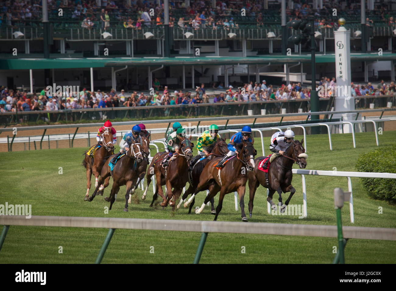 USA, Kentucky, Louisville. Horses racing on turf at Churchill Downs. Credit as: Don Grall / Jaynes Gallery / DanitaDelimont.com - Stock Image